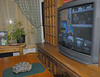 Tuesday November 13, 2007 - Ruby (the Red Foot Tortoise) watching BT ... (note the turtle on the TV)