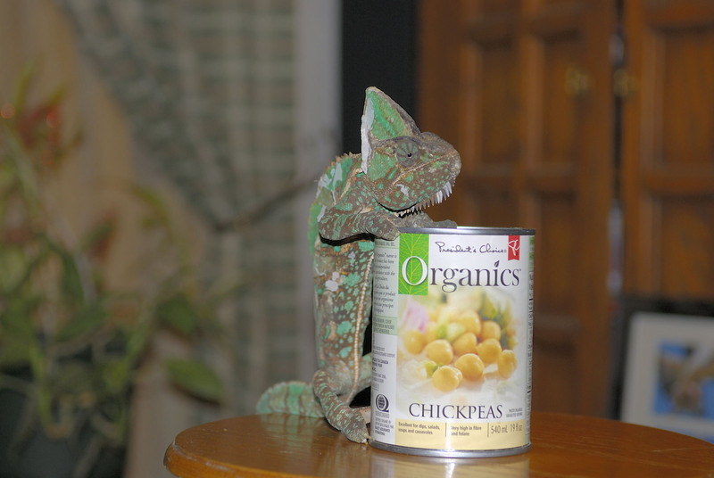 Buddy tried to support Frankie's claim that Chick Peas are Beans!
