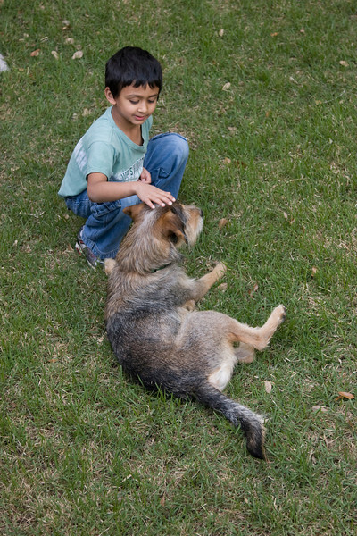 Rithik and Rover enjoying the backyard