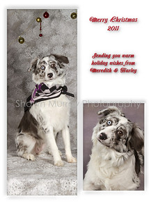 Christmas cards Meredith & Harley 002 (Sheet 2)