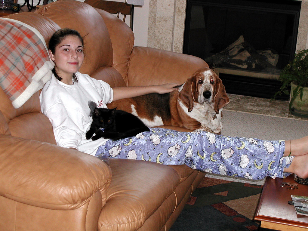 Amy, Peppermint and Minuteman chillin on the couch in 2004.