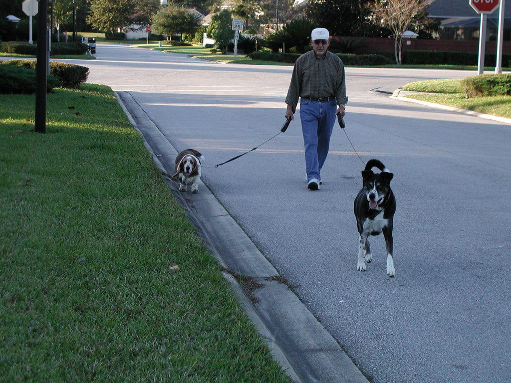 Rocky and Minuteman walking with Grandpa on Thanksgiving Day 2005.
