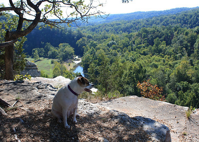 Mia at the King's River Overlook