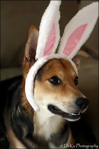 Easter-Moki0410(web)_0014