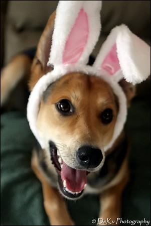 Easter-Moki0410(web)_0019