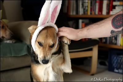 Easter-Moki0410(web)_0007