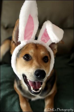 Easter-Moki0410(web)_0020