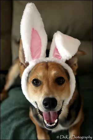 Easter-Moki0410(web)_0021