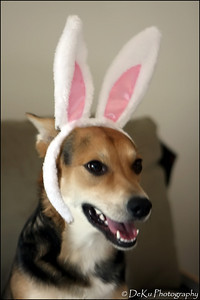 Easter-Moki0410(web)_0013