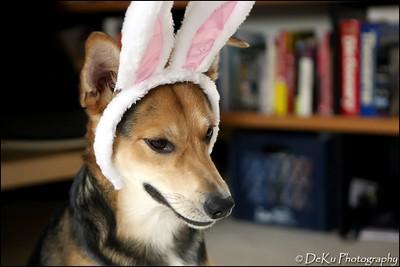 Easter-Moki0410(web)_0010