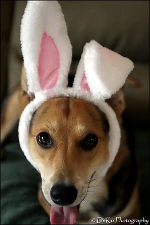 Easter-Moki0410(web)_0018