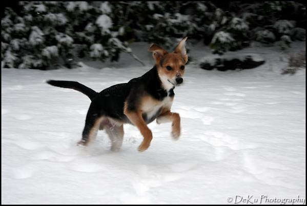 Moki-Snow(web)_0013