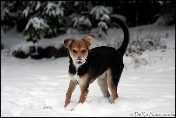 Moki-Snow(web)_0026