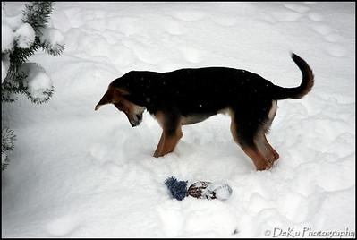 Moki-Snow(web)_0006