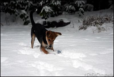 Moki-Snow(web)_0021