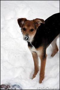 Moki-Snow(web)_0018