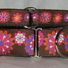 "Retro Daisies Brown and purple 1 1/2""wide with 1"" wide style #1 greyhound tag collar"