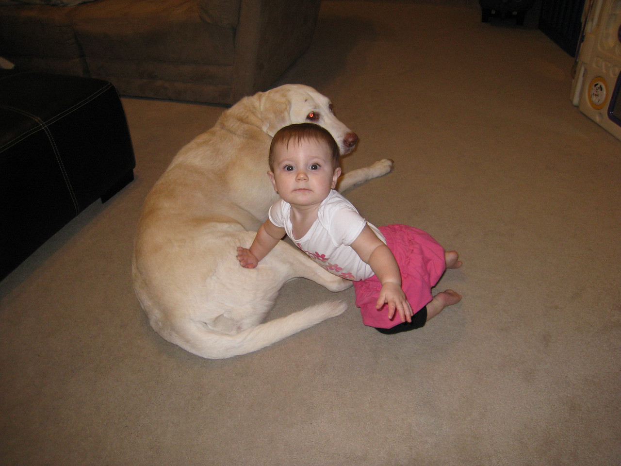 Laney leaning on Murphy - January 27, 2011