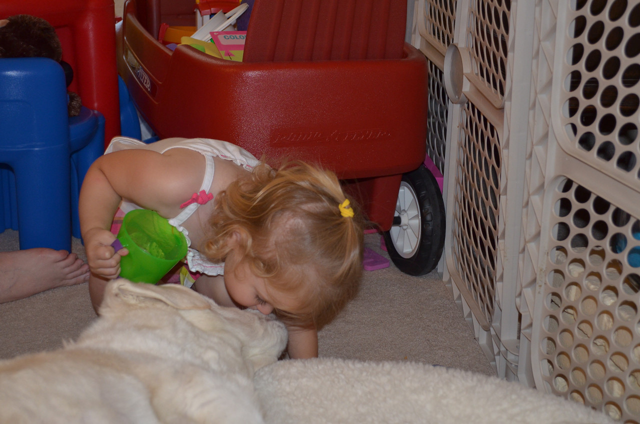 Laney kisses Murphy on the nose - June 8, 2012