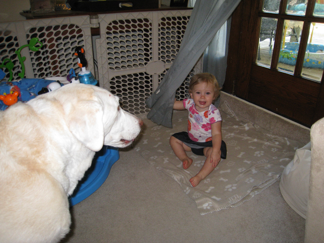 Murphy wants to get in all the shots - July 14, 2011