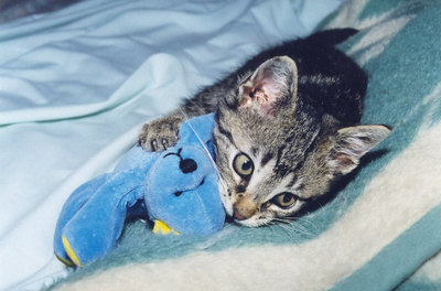 """This was Myst with his """"boo-bear"""" in 2000 when he was a few weeks old."""