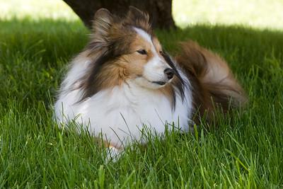 Jodie enjoying the breeze