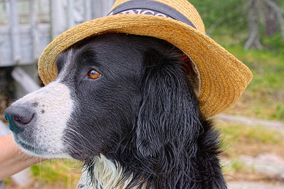 Nash in his favourite hat