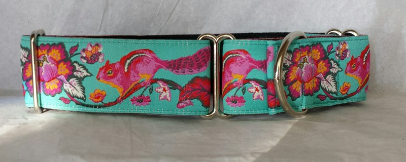 "Chipmunk, turquoise, 1 1/2"" wide collar (martingale)"