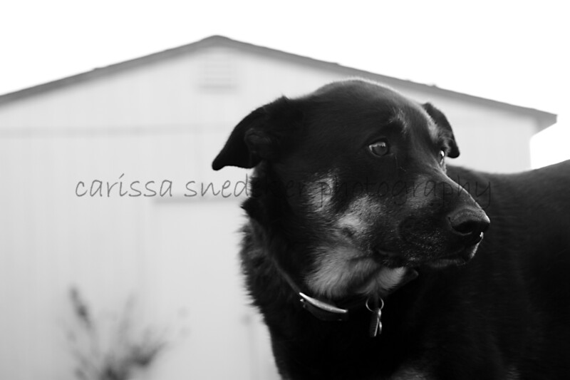 My sweet boy.