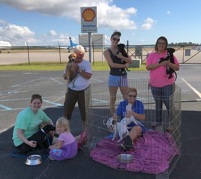All About Dogs Coastal Rescue – Gulf Shores, AL