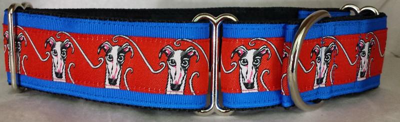 Danny greyhound