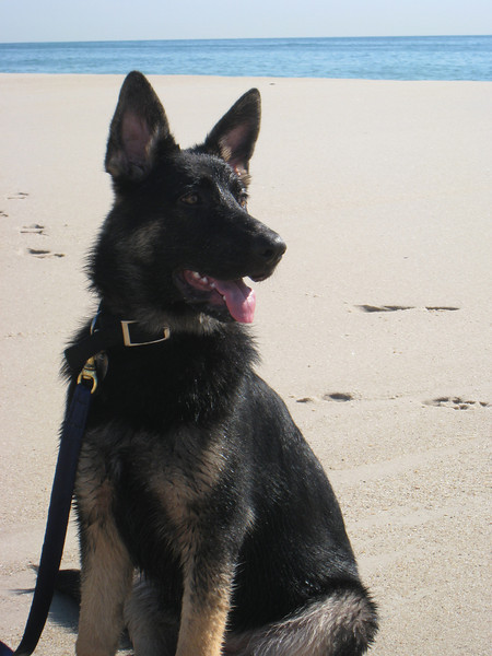 Sascha, looking a lot like Mom, at the beach