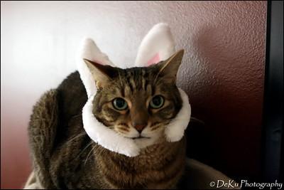 Easter-Oscar0410(web)_0001