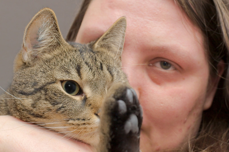 Face, cat and paw.