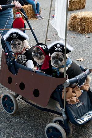 Howl'oween Dog Parade