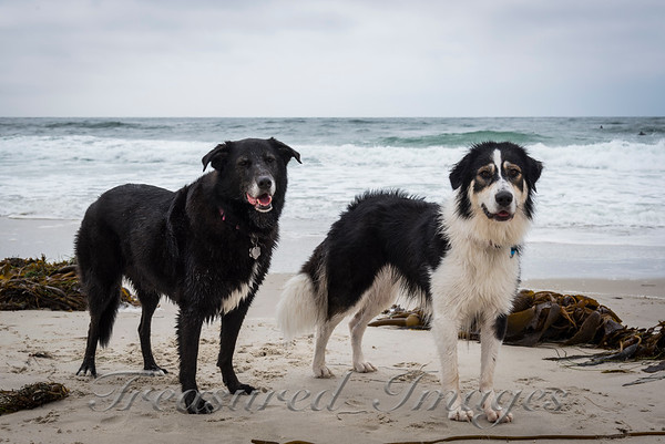 Annie Sally Beach Pose_DSC2700