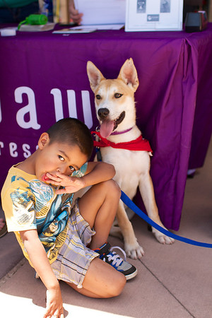OutPaws June Adoption Event at Krisers 41