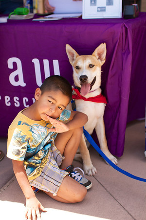 OutPaws June Adoption Event at Krisers 42
