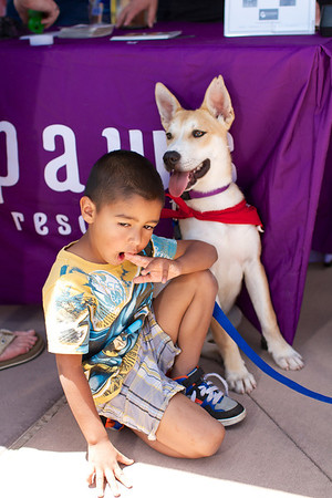 OutPaws June Adoption Event at Krisers 40