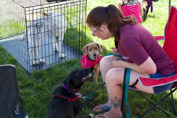 Redstone Adoption Event 27