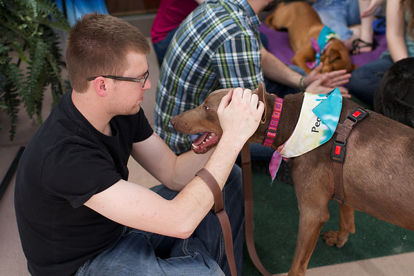 OutPaws May Adoption Event 105