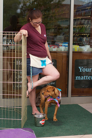 OutPaws May Adoption Event 199