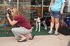 OutPaws May Adoption Event 67