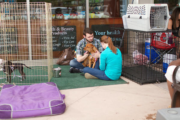 OutPaws May Adoption Event 188