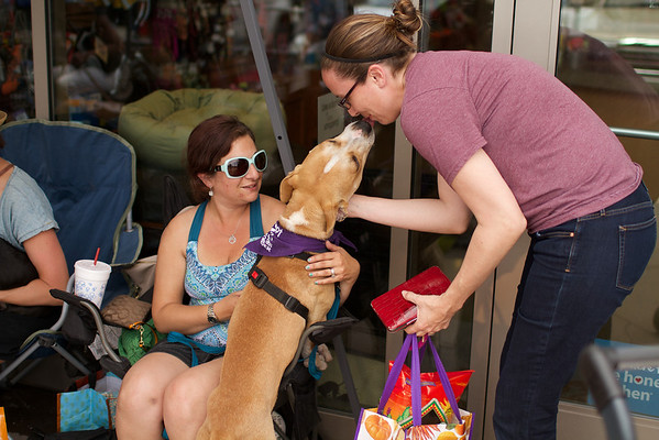 OutPaws May Adoption Event 167