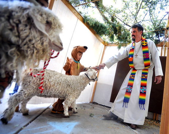 """Rev Martin Lettow, blesses the goats, Popeye and Luna, with the help of Fisk """"Scooby"""" Ehn, 6, on Sunday.<br /> The Shepherd of the Hills Lutheran Church in Boulder, held a Blessing of the Animals service on October 7, 2012.<br /> For more photos and a video of the blessing, go to  <a href=""""http://www.dailycamera.com"""">http://www.dailycamera.com</a>.<br /> Cliff Grassmick  / October 7, 2012"""