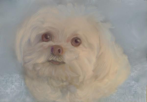 Cassie in  pastel