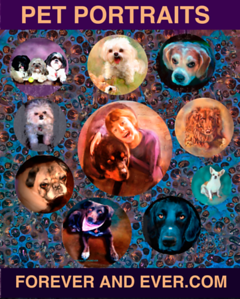 PET PORTRAIT POSTER showing different dogs. We paint all of them!
