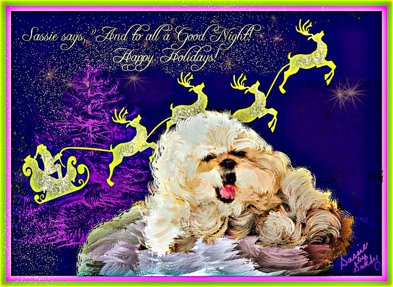 Christmas Card, my little dog Sassie yawning. I make cards also
