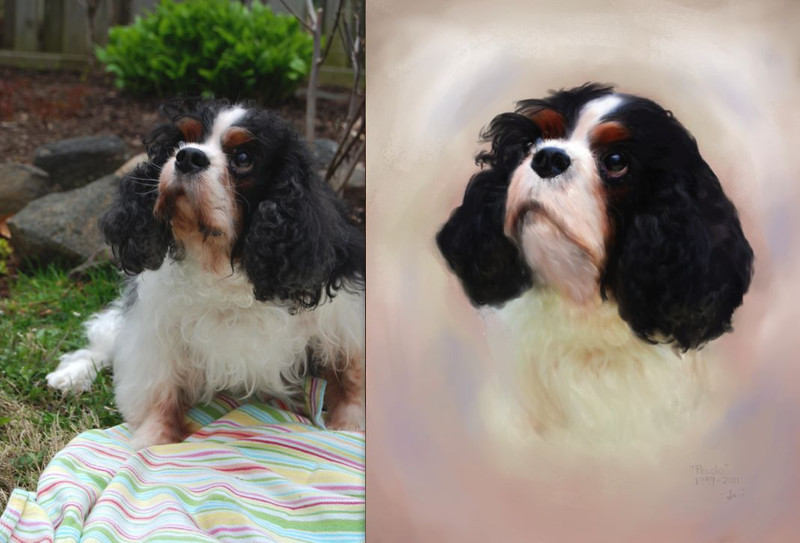 Memorial portrait of Pecolo.  Painting by Lucky Dog Pet Photography, based on the original copyright our client